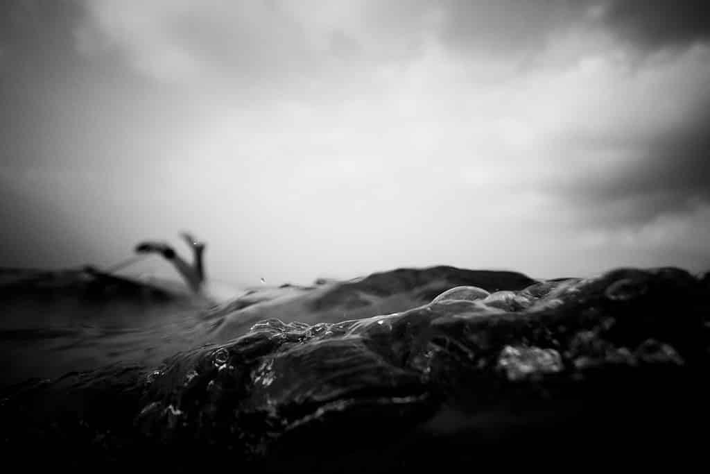 Photographer Sarah Lee