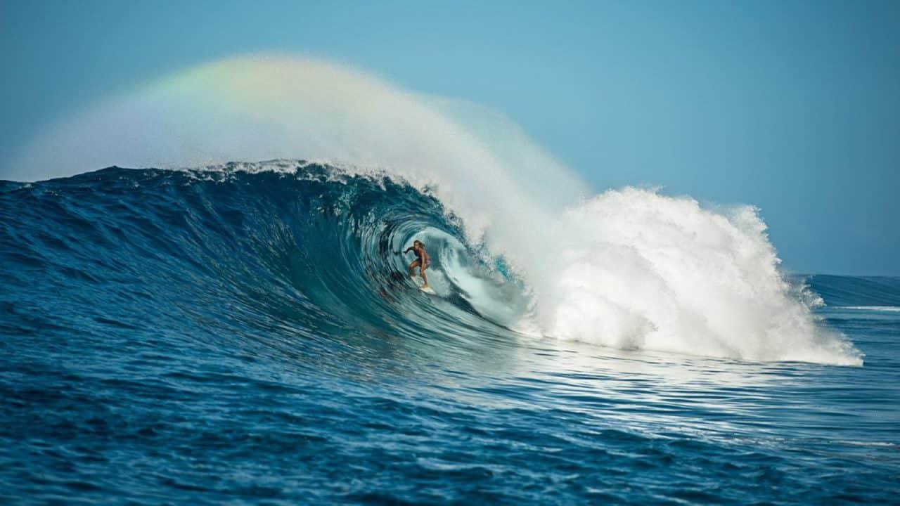 Surfboard Shape, Surfboard