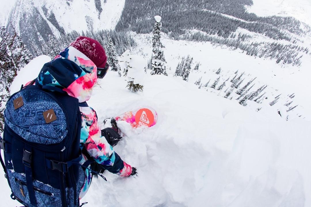 Robin Van Gyn Snowboard