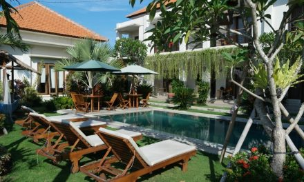 In da Surf Camp Canggu – Bali