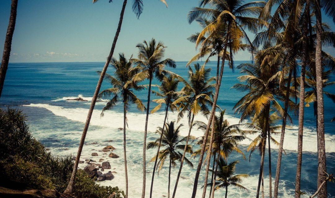 drivethru Surfcamps – Polhena – Sri Lanka