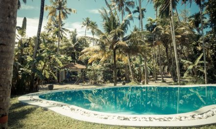 drivethru Surfcamps – Madiha – Sri Lanka