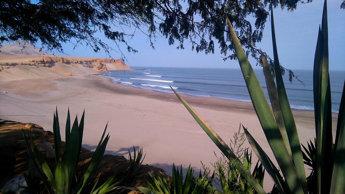 Arbeiten im Surfcamp, Surf and Work