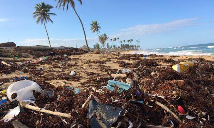 Nachhaltigkeit – Zeit umzudenken!