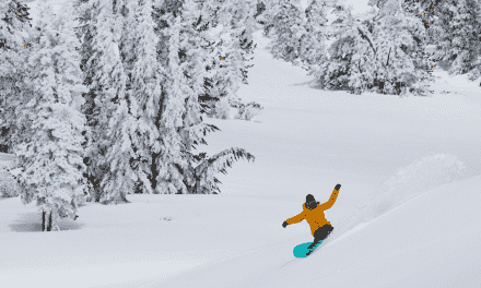 Jones Snowboards W's Hovercraft