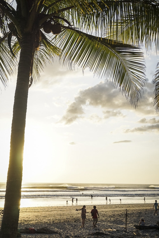Surfen Covid Costa Rica