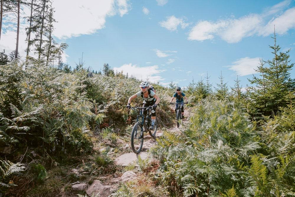 Baiersbronn: Zwei Mountainbikerinnen auf Trailabfahrt